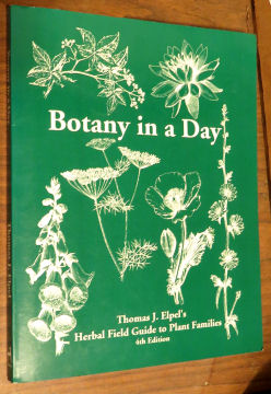 Botanical families found in Botany In a Day