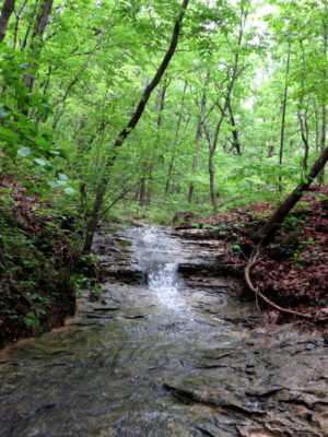 water in ravines