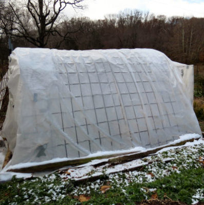 plastic protection on the shade house