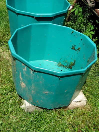 tubs for pepper container gardening