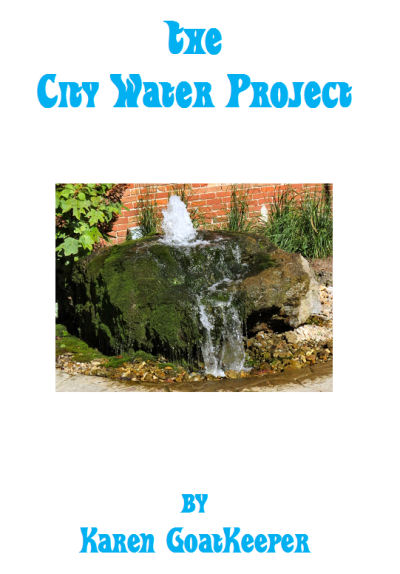 "setting goals for ""The City Water Project"""