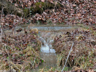 old spring shows more spring water problems