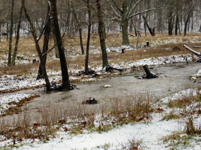 remnants of first flood