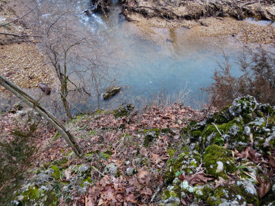 looking at the creek walking my Ozark hills