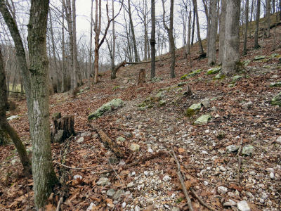 using a goat and deer path for walking my Ozark hills