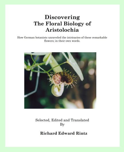 cover of Discovering the Floral Biology of Aristolochia by Dr. Richard Rintz