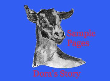 read sample pages from Dora's Story by Karen GoatKeeper