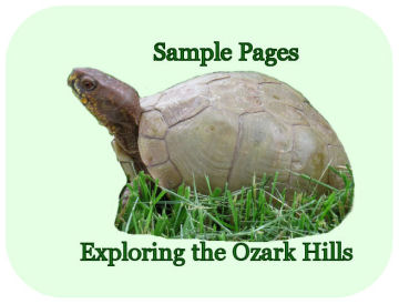 read sample pages from Exploring the Ozark Hills by Karen GoatKeeper