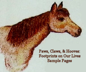 read sample pages from Paws, Claws & Hooves: Footprints on Our Lives from Missouri Writers, Ink